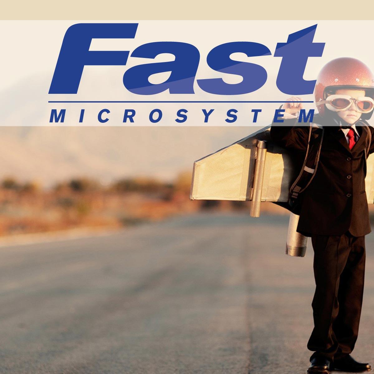 Fast Microsystem 2